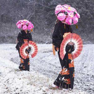 De online wintercursus